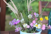 <h5>Wild flower collection (July)</h5>