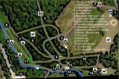 Forest Life map V4 2 copy