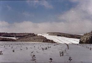 paysage neige2